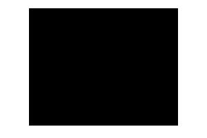 logo_fox_mx